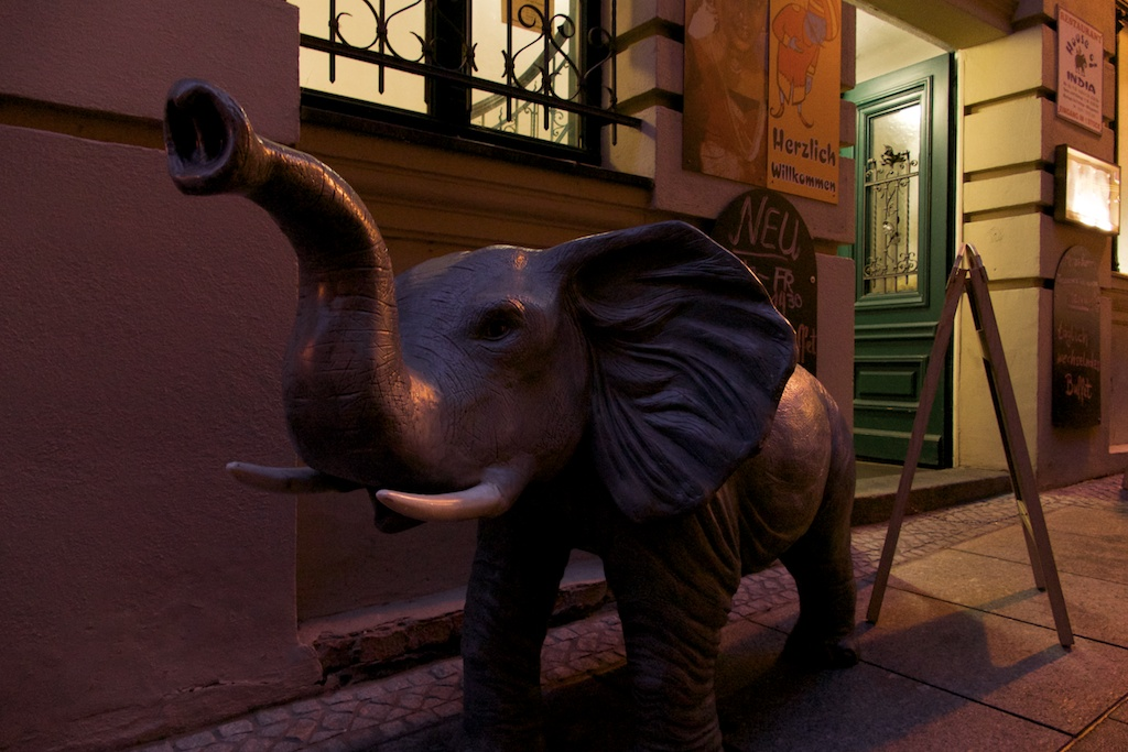 restaurant mit elefant in halle